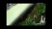 Свлачището Трифон Зарезан Продължава Към Морето Бгнес 07.06.2012 г.
