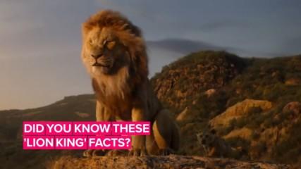 Всичко, което трябва да знаем преди да гледаме The Lion King
