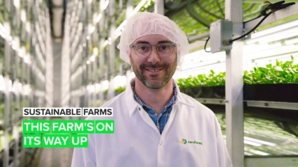 Sustainable Farm: AeroFarms has only one way to go, and that's up!