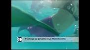 Откриха училище за русалки във Филипините