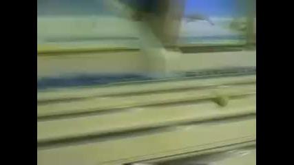 Remi - Тенис