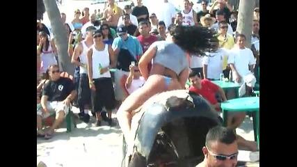 Укроти бика