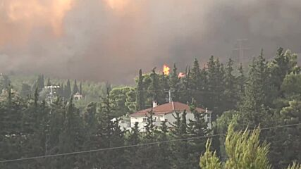 Greece: Wildfire threatens Athens suburb amid record-breaking heatwave