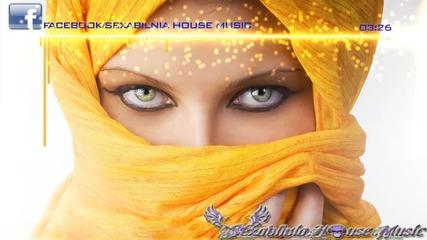 Арабски Трак! Mercan Dede Neyname (boral Kibil Unofficial Dream Mix)