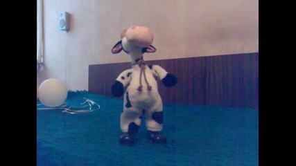 Лудата Крава