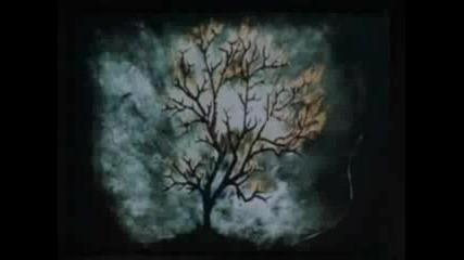 the Ring Предизвестена Смърт - Касетата