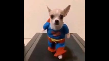 (смях) Куче - супердог