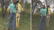 Ловец хвана жаба гигант!