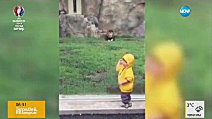 Страховито от зоопарка