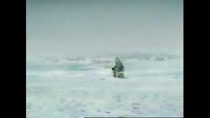 Ледена Риба