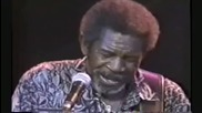 Luther Allison How Blue Can You Get