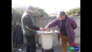 Истински Шахматисти В Градинката Пред Ал. Невски