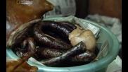 Табу: Противна храна