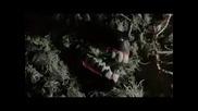 Sleepytime Gorilla Museum - Widening Eye