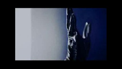 the Gazette - The Invisible Wall [pv]