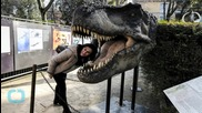 Could Dinosaurs Really Roam the Earth Again?