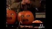 Happy Halloween, Pumpkins