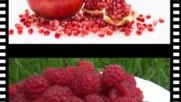 Плодове - Клипче за деца