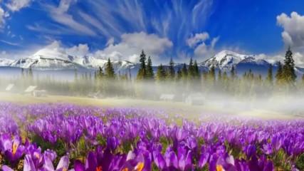 Пролет - Mарт - Нежност - Цветни минзухари! ... (music by Tim Janis)