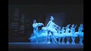 Swan lake Paris Opera 12