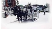 Grigoris Bithikotsis Ena Amaxi Me Dyo Aloga - A beautiful carriage with two horses©