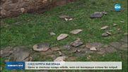 СЛЕД УРАГАННИЯ ВЯТЪР: Щети за стотици хиляди във Враца