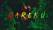 Nareku - Ragga Mix Reggae Raggastep Dub