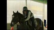 В Южна Корея лекуват пристрастени към компютрите деца с конна езда