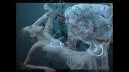 Je Taime - Lara Fabian - Превод