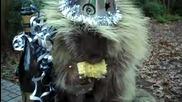 Яко мляскане пада :) И животните празнуват Нова Година!