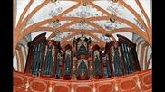 J. S. Bach - Praludium und Fuge e-moll Bwv 548 - Fuga
