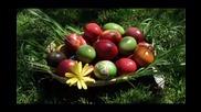 Честит Великден / Andra - Abelia