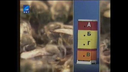 Насаме с пчелите(bg Audio) 13 част