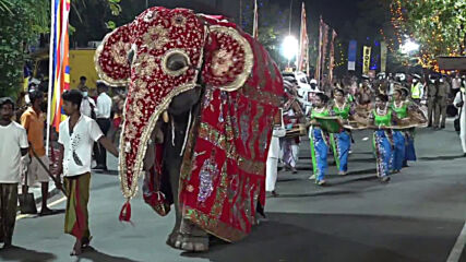 Sri Lanka: Costumed elephants and performers march through Colombo for Navam Perahera parade