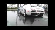 Bugatti Veyron 1001ph