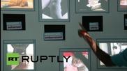 """САЩ: Открийте """"Как котките превзеха интернет"""" чрез тази изложба"""