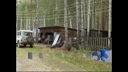Руснаци търсят нов дом за мечката им