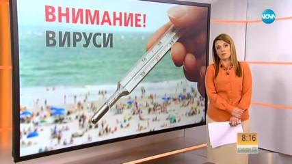 Летни вируси върлуват по морето