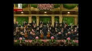 New Year Concert 2011 11част