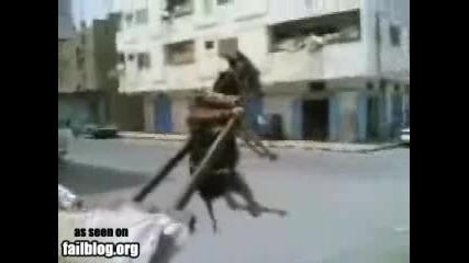 Магаре във въздуха