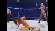 The Bella Twins Vs Victoria And Michelle Mccool