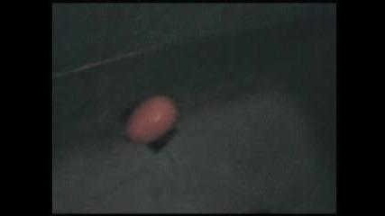подводна шейна
