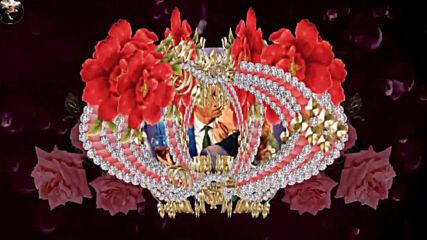 Красивый сборник стилей и переходов/ Андрей Обидин - Весенние цветы