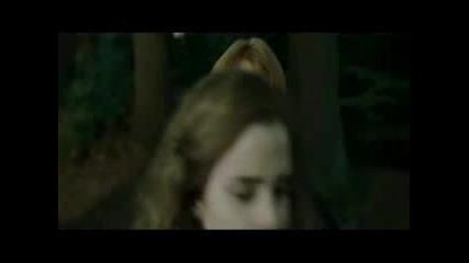 Свалки (Ron/Hermione)