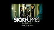Sick Puppies Youre going down with lyrics