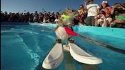 Катеричка кара водни ски - Go Pro