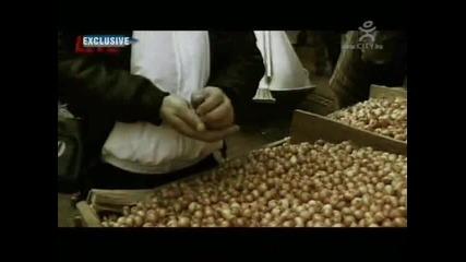 Rumyneca i Enchev - Stolichna Hq