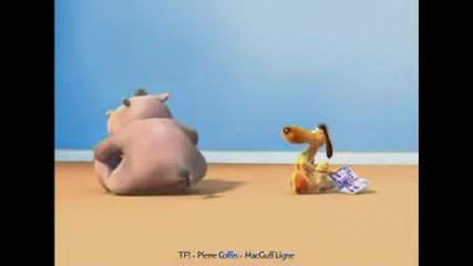 Hippo Fart Annoys Dog