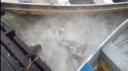 Бразилски рибари хранят пирани