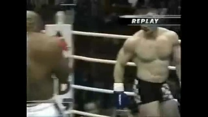 Mirko Crocop Highlights